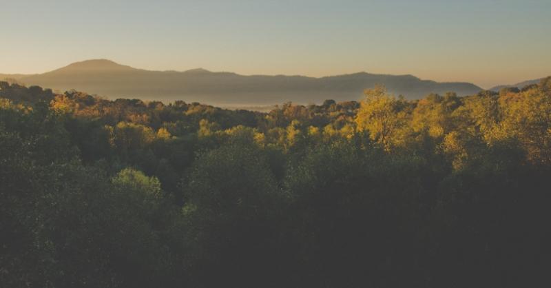 Sunrise in California